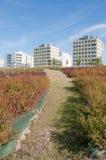 Ecological city. Gardens in Vitoria, ecological city Royalty Free Stock Photos