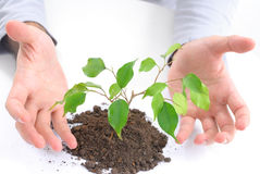 Ecological concept Royalty Free Stock Photography