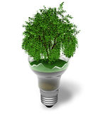 Ecological concept: green tree in a broken lamp. Isolated over white background Royalty Free Stock Photography