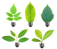 Ecological concept, leaf and lamp mix together Royalty Free Stock Photography