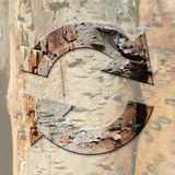 Ecological concept with recycle sign on tree bark background Royalty Free Stock Images