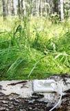 Ecological concept, symbolizing renewable energy Stock Photo
