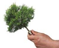 Ecological concept, symbolizing renewable energy Stock Photography