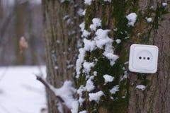 Ecological concept, symbolizing renewable energy, bio energy a Stock Photo