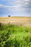 Ecological countryside landscape Stock Photo