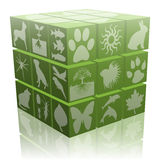 Ecological cube. Illustration of ecological dice with symbols of plants, insects and animals Royalty Free Stock Images