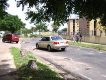 Ecological damage: trees in Puerto Ordaz city, Venezuela, are being cut down in the protests of this South American country. M Royalty Free Stock Photos