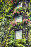 Ecological decoration of building Royalty Free Stock Photos