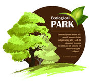 Ecological design template Royalty Free Stock Images