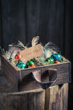 Ecological Easter eggs with hay and feathers Stock Photo