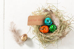 Ecological Easter eggs Stock Images