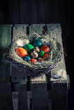 Ecological Easter eggs in the rustic cottage Royalty Free Stock Images