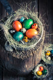 Ecological Easter eggs in wooden small henhouse Stock Photo