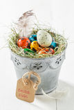 Ecological eggs for Easter with feathers and hay Stock Photography