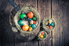 Ecological eggs for Easter with hay and feathers Royalty Free Stock Image