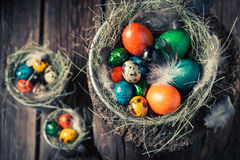 Ecological eggs for Easter in the nest with hay Royalty Free Stock Images