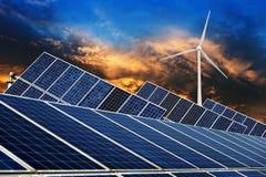 Ecological energy renewable solar panel plant Royalty Free Stock Photos