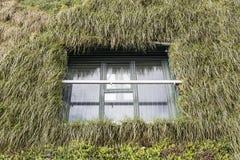 Ecological facade with plants Stock Photos