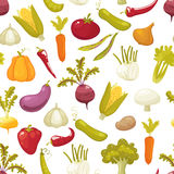 Ecological farming production classical vegetables seamless pattern on white background. Vector illustration retro style Royalty Free Stock Photo