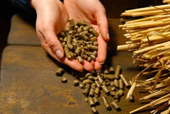 Ecological fuel. Alternative biofuel from straw combustion in furnaces stock photo