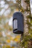 Ecological Gardening Batbox Royalty Free Stock Image