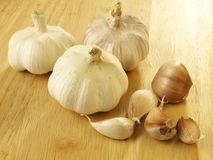 Ecological garlic. Ecological white garlic in peel Royalty Free Stock Photo