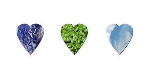 Ecological hearts Stock Photography