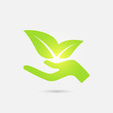 Ecological icon. Human hand growing green leaves. Stock Photography