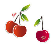 Ecological juicy cherries. Vector of organic non-gmo berries with eco and bio captions Royalty Free Stock Photos