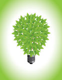 Ecological light bulb Royalty Free Stock Image