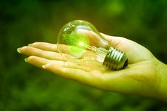 Ecological light bulb Royalty Free Stock Photos