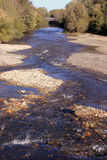 Ecological management of river banks Stock Image