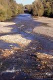 Ecological management of river banks Stock Image