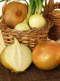 Ecological onions Stock Images