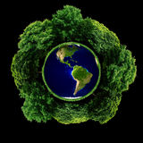 Ecological plant earth. Conceptual montage of Planet Earth surrounded by green trees, ecological concept Stock Photo