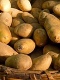 Ecological potatoes Stock Photo