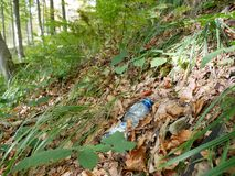 Ecological problems and pollution of nature by rubbish. A plastic bottle in the forest on the trail Royalty Free Stock Photo