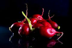 Ecological radishes red radishes - rabanites of intense red color. royalty free stock photos