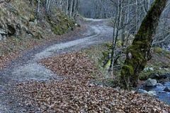 Ecological road through a mountainous autumn forest near a small river, Teteven town, Balkan mountain. Bulgaria royalty free stock photo