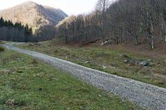 Ecological road through a mountainous autumn forest to a sunlit peak, Balkan mountain, Teteven town. Bulgaria royalty free stock image