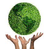 Ecological symbol of earth on american side. To publicize nature Royalty Free Stock Photography