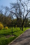 Ecological system of public lighting located in the park Stock Photography