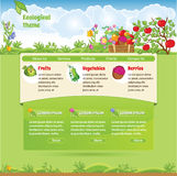 Ecological theme for web site Stock Photos