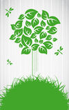 Ecological tree Royalty Free Stock Images