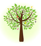 Ecological tree with butterflies flying around Stock Photos