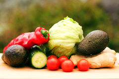 Ecological vegetables stock image