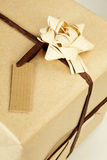 Ecological wrapped present. Royalty Free Stock Photography