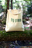 Ecologically Freindly Shopping Bag. Shopping bag made out of recycled materials, Ecologically  freindly, replaces plasic shopping bags Royalty Free Stock Photos