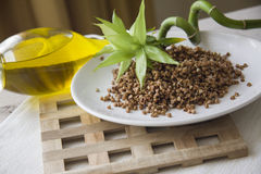 Ecologically pure buckwheat Royalty Free Stock Images