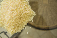 Ecologically pure rice Stock Images